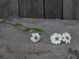 Fleur Blomst H57 cm vit , hemmetshjarta.no