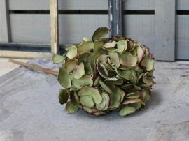 Fleur Hortensia H46 cm grønn , hemmetshjarta.no