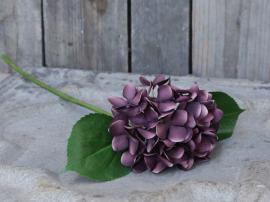 Fleur Hortensia H51 cm lilla , hemmetshjarta.no