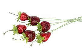 Jordbær/Stick 4cm 6-pack , hemmetshjarta.no