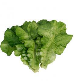 Kunstig Salatblad 6 stk , hemmetshjarta.no