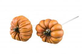 Gresskar/ stick Oransje 2-pack , hemmetshjarta.no