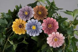 Blomst / Stick Fargeblanding 3cm 6-pakning , hemmetshjarta.no
