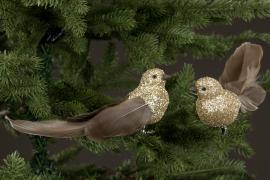 Fugl/Klips Fjær Glitter Mix 20cm 2-pakning , hemmetshjarta.no