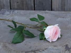 Blomst Rose H57 cm rosa , hemmetshjarta.no