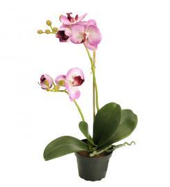 Kunstig Phalaenopsis 45 cm , hemmetshjarta.no