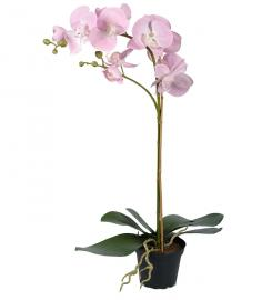 Kunstig Phalaenopsis 60 cm , hemmetshjarta.no