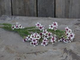 Fleur Blomst H65 cm vit , hemmetshjarta.no
