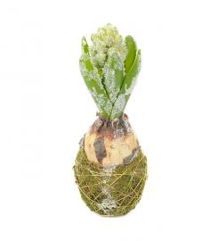 Kunstig Hyacint med snø 20 cm , hemmetshjarta.no