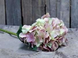 Fleur Hortensia H52 cm rosa , hemmetshjarta.no