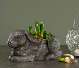 Kaninkrukke 35 cm - antikgrå , hemmetshjarta.no
