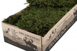 Grønn mose Flamsäker 500g , hemmetshjarta.no