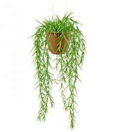 Kunstig Hoya 45 cm , hemmetshjarta.no