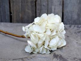 Fleur Hortensia H46 cm krem , hemmetshjarta.no