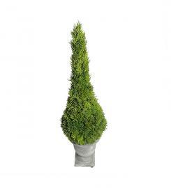 Kunstig Cypress 75 cm , hemmetshjarta.no