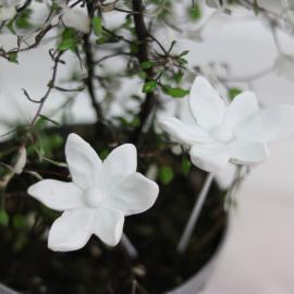 Blomst / Stick 2-pakning - antikkhvit , hemmetshjarta.no