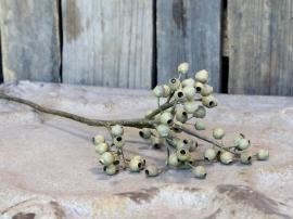 Fleur Gren med frøkapsler H62 cm grønn , hemmetshjarta.no