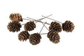 Kongle / tråd natur 3 cm 50-pack , hemmetshjarta.no