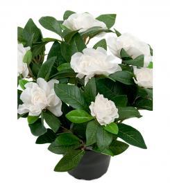 Kunstig Gardenia 25 cm , hemmetshjarta.no