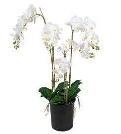 Kunstig Phalaenopsis 130 cm , hemmetshjarta.no
