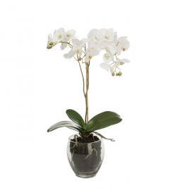 Kunstig Phalaenopsis 65 cm , hemmetshjarta.no