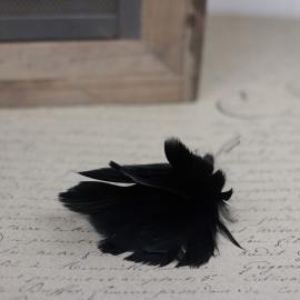 Fjær bukett til ris 12- pack - svart , hemmetshjarta.no