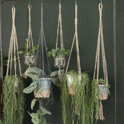 Ampel tau til blomsterpotte 90 cm naturlig jute , hemmetshjarta.no